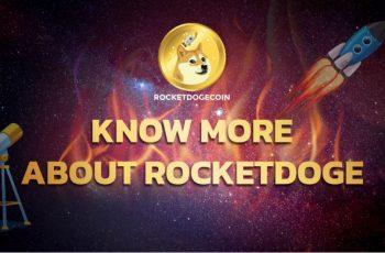 RocketDoge: Omdannelse af et meme -token til et decentraliseret økosystem